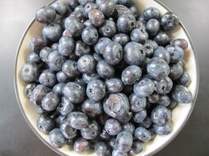Minnesota Blueberries
